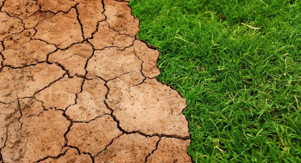 Cuidar nuestro planeta es cada vez más importante. En Espacio Z te decimos algunas claves para luchar contra el calentamiento global